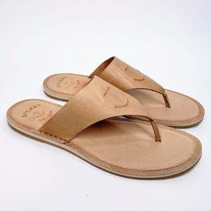 NWOB Sperry Top Sider Thong Sandal Flip Flops - 12